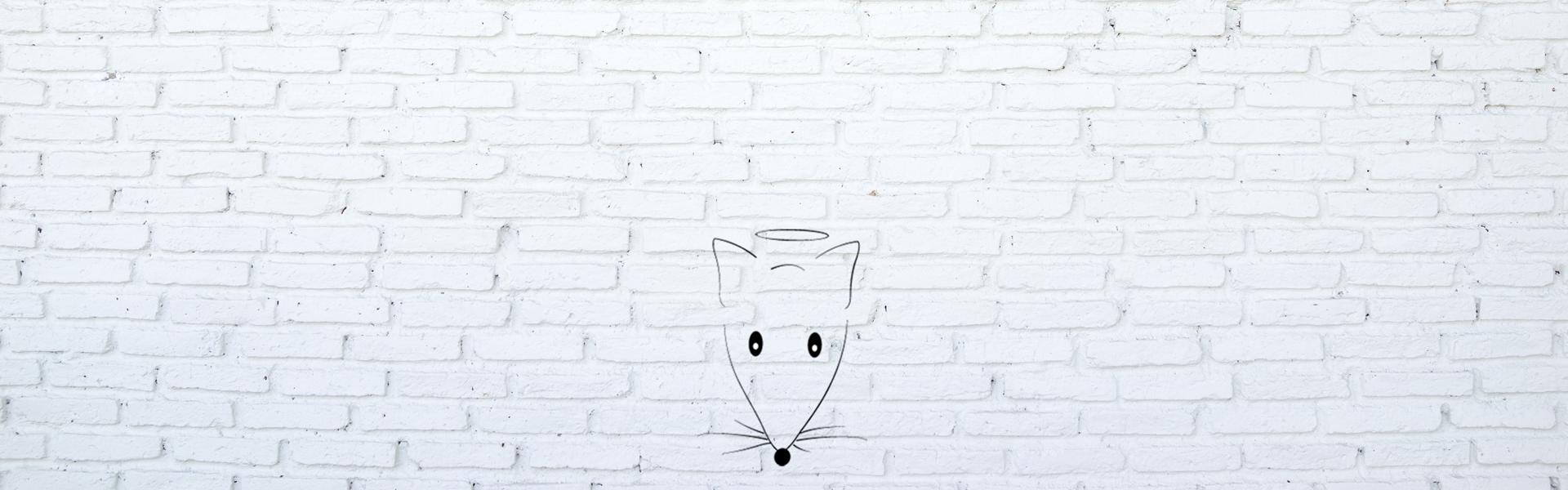 Little Mouse Design